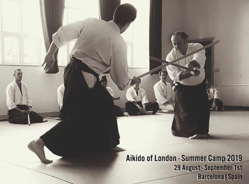Teen Aikido Starter